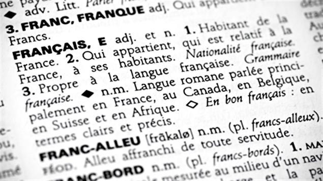 Nouveaux mots entrés dans les dictionnaires en 2019